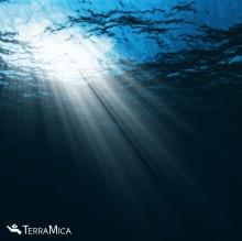 Under Water, Light Shining