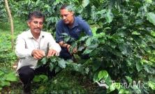 Ladislao and Patrick with coffee tree 2015
